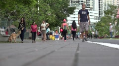 Shot of pedestrian from the ground level, La Cinta Costera, Panama City, Panama Stock Footage