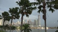 City panorama with Palm trees. La Cinta Costera, Panama City, Panama Stock Footage