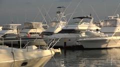 Yachts in marina. La Cinta Costera, Panama City, Panama Stock Footage