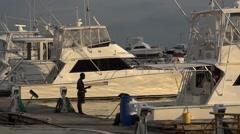 Yacht marina. La Cinta Costera, Panama City, Panama Stock Footage
