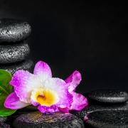 spa concept of orchid flower, green leaf, pyramid zen basalt stones with drop - stock photo
