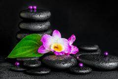 spa concept of purple orchid flower, green leaf, pyramid zen basalt stones wi - stock photo