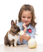 Little girl feeding bunny with cabbage Stock Photos
