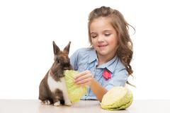 Girl feeding bunny with cabbage - stock photo