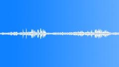 Animals_blackcap_singing_01 Sound Effect