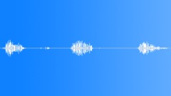 Animals_willow warbler_singing_01 Sound Effect