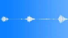 Animals_willow warbler_singing_02 Sound Effect