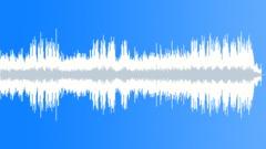 Happy Country Ukulele (Acoustic) - stock music