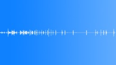 Dog Bark Pom & Terrier - sound effect