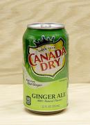 Ginger Ale - stock photo