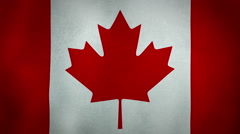 Flag Canada Stock Footage