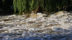 River water in Calera Córdoba Stock Footage