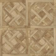 Modul parquet of france for cg - stock photo