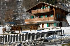 Swiss Farmhouse Stock Photos