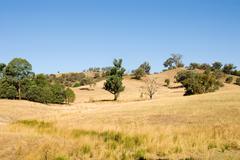 Rural Scene - stock photo