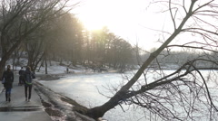 Fallen tree near the pond and the people back in the afternoon, winter Stock Footage
