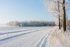 Stock Photo of Dutch winter farmland covered with snow