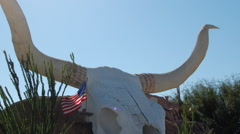Giant Cow Skull Sculpture Stock Footage