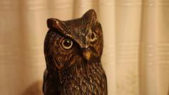 Shot of owl figurine Stock Footage