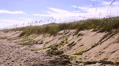 Florida CapeCanaveral SeashorePark Beach 10svv Stock Footage