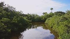 Florida CapeCanaveral SeashorePark 06osvv Stock Footage