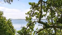 Florida CapeCanaveral SeashorePark RIVER 02svKBv Stock Footage