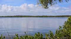 Florida CapeCanaveral SeashorePark RIVER 03svKBv Stock Footage