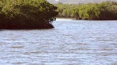 Florida NewSmyrna Beach River 05svv Stock Footage