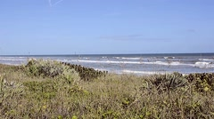 Florida CapeCanaveral SeashorePark Beach 14svv Stock Footage