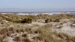 Florida NewSmyrna Beach Dunes 10svKBv Stock Footage