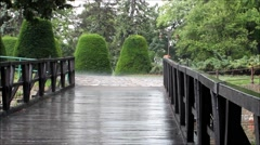 Girl With Umbrella By Bridge In Rain Stock Footage