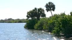 Florida OakHill SeminalRest  Cape CanaveralSPark 04svv - stock footage