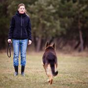 Master and her obedient (German shepherd) dog Stock Photos