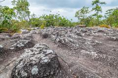 Field of nodulated stone in Lan Hin Pum, Thailand - stock photo
