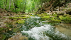 Spring rill flow into canyon. - stock footage