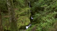 Waterfall in Glendalough Stock Footage