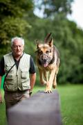 Master and his obedient (German shepherd) dog at a dog training Stock Photos