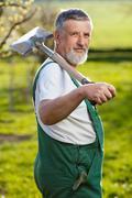 Portrait of a senior man gardening in his garden (color toned im Stock Photos