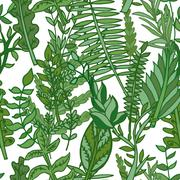 herbal pattern. hand drawn vector illustration - stock illustration