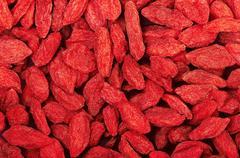 Dried goji berries - stock photo