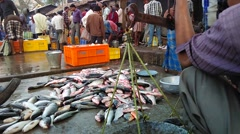 Fish market and fish marchent Stock Footage