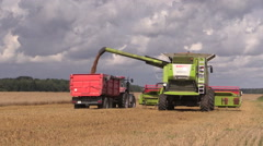 Agricultural machine load harvested grain into truck trailer Stock Footage