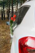 Bouquet of roses in car door Stock Photos
