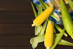 Cobs of Raw Sweet Corn Stock Photos