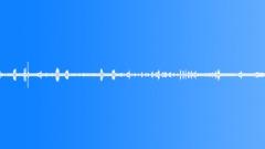 animals_reed warbler_singing_02 - sound effect