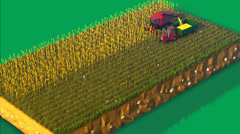 Combine Harvester Working In Field. Agriculture Stock Footage