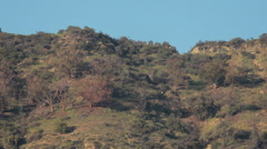 Hollywood sign on mountain - stock footage