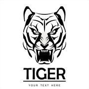 Elegant Staring Tiger Stock Illustration