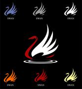 Beautiful Swan - stock illustration