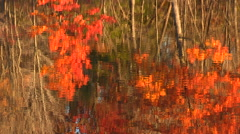 Fall Autumn Color Reflection on Water - stock footage